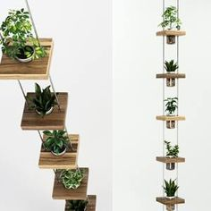 models: Indoor - Hanging shelf with flowers Suspended Shelves, Hanging Shelves, Floating Shelves, Wire Wall Basket, Baskets On Wall, Flower Vases, Flowers, Iron Furniture, 3d Models