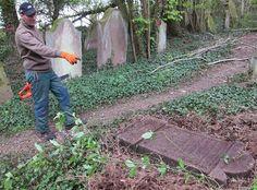C'est seul que Lucien Charneau, ouvrier communal de Trimbach, assure depuis début avril les travaux de remise en état du cimetière juif.
