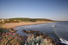 Woolacombe Beach England Top, Homes England, Cornwall Coast, Devon And Cornwall, Woolacombe Beach, Visit Devon, Uk Beaches, Scene Setters, Beach Huts