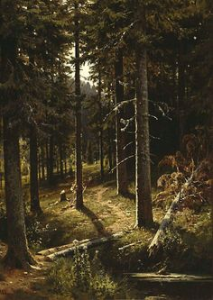 Forest landscape. 1890. Ivan Shishkin (25 January 1832 – 20 March 1898).