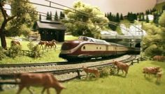 """Some of the trains all together filmed from the """"helicopter""""."""
