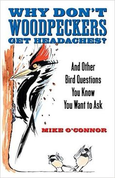 Amazon.com: Why Don't Woodpeckers Get Headaches?: And Other Bird Questions You Know You Want to Ask eBook: Mike O'Connor: Kindle Store