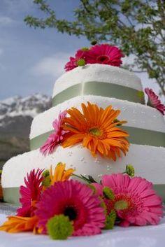 Pink and orange gerbera daisy wedding cake.