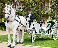 If you've always imagined yourself as a princess on your Big Day, a horse-drawn carriage will make your dreams come true.