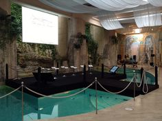 #convention #novartis #stage #swimming pool