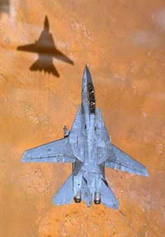 Me and my shadow...  F-14 Tomcat