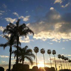 No filter sunset Orange California.  #nofilter #sunset #findbeautywhereyouare #palmtrees #orangecalif #orangecountyca #sky #outplanettravel