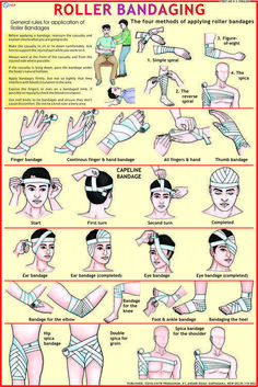 First Aid Charts Exporter, Manufacturer, Distributor & Supplier, First Aid Chart… - Everything You Need To Know About Survival Skills