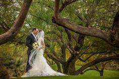 This @golfDWGR #realwedding has us wanting to pack our bags for Palm Desert! #palmdesertwedding #outdoorwedding #palmspringswedding #californiawedding #desertwedding