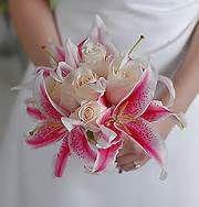 Simple Stargazer Lily Flower Arrangements - Bing Images