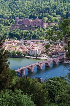 Heidelberg, Germany                                                                                                                                                                                 Mais