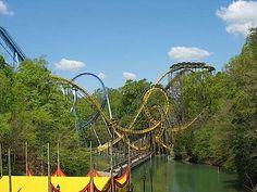 Busch Gardens, Williamsburg, VA  Best amusement park ever!