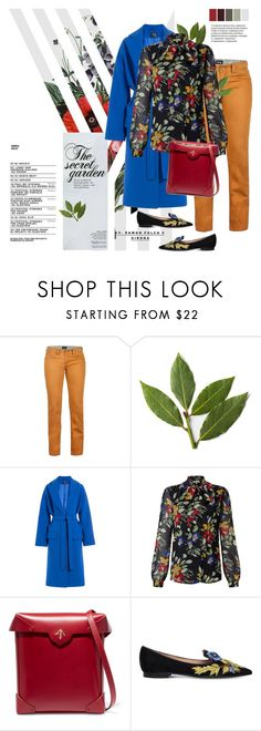 """""""Secret Garden"""" by cara-mia-mon-cher ❤ liked on Polyvore featuring Marmot, Alexander McQueen, Somerset by Alice Temperley, MANU Atelier and Alberta Ferretti"""