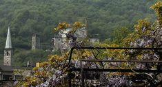 Torri, santuari e glicini di Ornavasso, VCO, Piemonte.