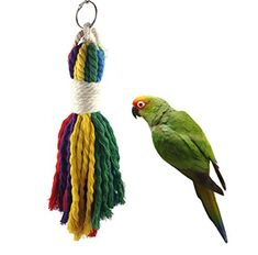 Pet Products Buy Cheap Rattan-weaving Five-star Bids Cage House Pet Bites Parrot Bird Climb Toys Swing To Reduce Body Weight And Prolong Life