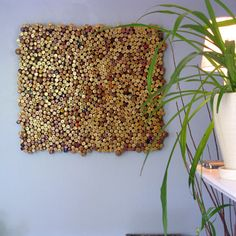 Wine Cork Installation. If you've been collecting corks, here's our favourite way to use them! If you haven't started collecting them...no worries Mundotex sells wine cork stoppers!