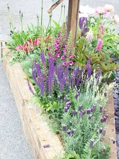 small garden – Im not up on gardening/terms but I like this kind of border full of different flowers, the mix and how they look wild rather than perfectly pruned (dislike!) small garden – Im not up on g Wildflower Garden, Small Garden, Raised Garden, Plants, Cottage Garden, Cottage Garden Plants, Garden Borders, Garden Planning, Farm Gardens