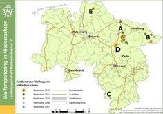 Wolfsnachweise Niedersachsen   Wildtier Management Niedersachsen  Landesjägerschadft Niedersachsen
