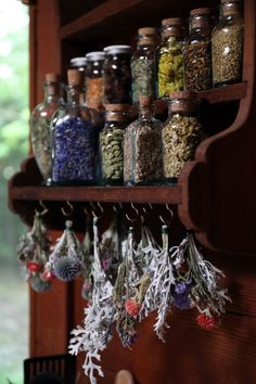 Herbal Medicine Herbal apothecary shelf with glass cork top bottles filled with dried herbs with hanging dried plants below - Find out how herbalist Kiva Rose stocks and organizes the herbal remedies in her home apothecary.