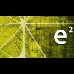 Design E2 is challenging builders through eco friendly architecture in modern cities worldwide