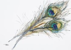 Choose your favorite peacock feather watercolor paintings from millions of available designs. All peacock feather watercolor paintings ship within 48 hours and include a money-back guarantee. Peacock Feather Tattoo, Feather Drawing, Feather Wall Art, Feather Painting, Peacock Feathers, Peacock Colors, Art Prints For Sale, Fine Art Prints, Watercolor Peacock