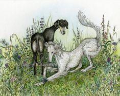 Saluki Hound Dog Art Print