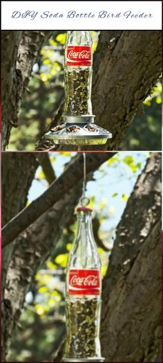 repurposed soda bottle bird feeder