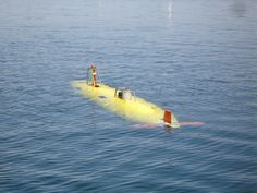 Submersible Robots Could Aid Search for Flight 370