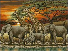 Cross Stitch Kits, Cross Stitch Charts, Embroidery & Tapestry Kits - Very Crafty Counted Cross Stitch Kits, Cross Stitch Charts, Cross Stitch Designs, Cross Stitch Patterns, Elephant Cross Stitch, Cross Stitch Animals, Embroidery Kits, Cross Stitch Embroidery, Embroidery Fabric