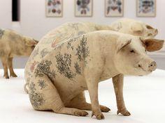 Les cochons tatous (The tattooed pigs) by Belgian artist Wim Delvoye