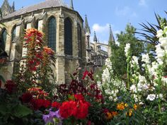 Beautiful flowers behind the Notre Dame Cathedral of Reims in France