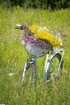 Spring Break on a Cruiser Bicycle - Ride for Free and Get Fit! Bike Planter, Velo Retro, Bicycle Basket, Bike Baskets, Bicycle Race, Vintage Bicycles, Flower Basket, Flower Delivery, Garden Art