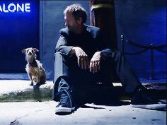 House M.D. House Md, Hugh Laurie, Medical Students, I Miss You, Dogs, Animals, Animales, Animaux, I Miss U