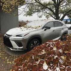 Yes - it's and it's - in on our campus! Winter Snow, November, Bmw, Fall, Autumn, Fall Season