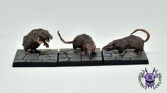 D&D - Critters: Giant Rats (by Mantic) #ChaoticColors #commissionpainting #paintingcommission #painting #miniatures #paintingminiatures #wargaming #Miniaturepainting #Tabletopgames #Wargaming #Scalemodel #Miniatures #art #creative #photooftheday #hobby #dungeonsanddragons #dnd #frostgrave #rpg #roleplay #paintingwarhammer  #ageofsigmar #whfb #fantasy #warhammerfantasy #Kingsofwar #kow #kingsofwarvanguard #mantic #dungeonsaga #critter #bat #rat #spider Warhammer Fantasy, Warhammer 40k, Dungeons And Dragons, Age Of Sigmar, Tabletop Games, Rats, Spider, Lion Sculpture, Miniatures