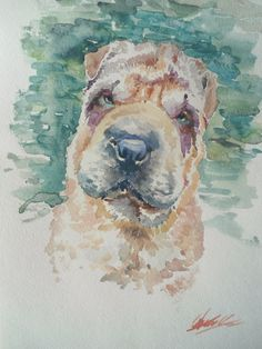 Shar Pei Art. Watercolor Shar Pei painting. Cachorros Shar Pei, Pet Art, Cuddles, Dog Stuff, Love Art, Art Sketches, Watercolor Art, Favorite Quotes, Bff