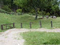 Model pasture with tall grass and barbed wire fence. Model Trenciler, Model Trenler Çok Güzel Çalışmalar Bunlar