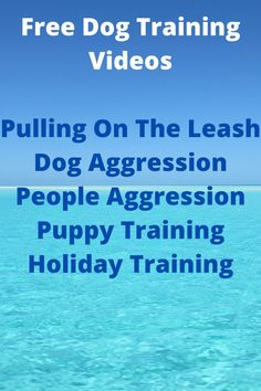 Discover How You Can Solve Your Dog Or Puppy Behavioral Issues With These 5 FREE Videos. #dog training #puppy training # dog aggression Online Dog Training, Dog Training Videos, Holiday Train, Behavioral Issues, Aggressive Dog, Free Dogs, Dog Leash, Dogs And Puppies