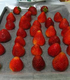 Quick Tip: How to Freeze Strawberries - Willow Bird Baking Willow Bird Baking Food Tips, Diy Food, Food Hacks, Cooking Tips, Cooking Recipes, Freezing Strawberries, Dried Strawberries, Kitchen Tips, Kitchen Gadgets