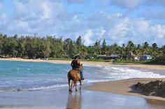 http://realestate.kauai.com Kauai Real Estate Anahola Guide| Kauai.com Real Estate