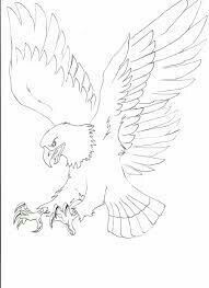 Drawn eagle line drawing - pin to your gallery. Explore what was found for the drawn eagle line drawing Bird Drawings, Animal Drawings, Aquarell Phönix Tattoo, Eagle Drawing, Eagle Pictures, Leather Tooling Patterns, Eagle Art, Wood Carving Patterns, Wood Burning Art