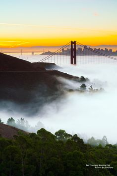 Golden Gate in Morning Fog ~ San Francisco, California