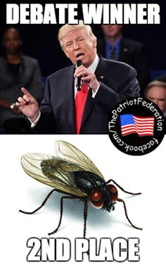 "Fly landed on Hillary's face during the debate, clear sign of Satan, lord of flies, anointing his queen, but leftist media tried to get people to believe it was a Native American totem delivering a ""good message"" of Hillary's emotional trauma she was going through because of how mean Trump was being to her in the moment before it landed on her; she never even noticed there was a fly on her face; remind you of Obama?"
