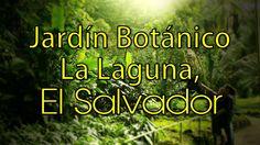 El Salvador : Parque Jardín Botánico La Laguna, Antiguo Cuscatlán. HD
