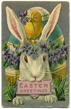 Vintage Easter bunny card.