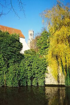 Autumn, Bruges, Belgium Copyright: Robert Kk