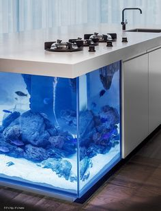 The Ocean Kitchen by Robert Kolenik Eco Chic Design is a made to order, L-shaped kitchen counter with mechanized stove top that sits upon a giant aquarium..