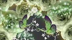 Hd Desktop, High Definition, Hd Wallpaper, Plant Leaves, Floral Backgrounds, Plants, Wallpaper In Hd, Wallpaper Images Hd, Plant