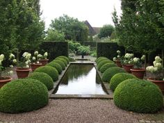 Clipped Box, Hydrangea's, Water & symmetry....I love it Wollerton Old Hall - the most perfect garden