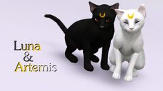 Luna & Artemis - Simblrdeglam